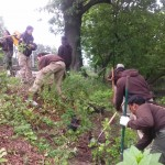 Corps Members Plant Trees on the Bank of the Bronx River