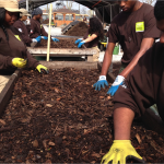 Corps Members Composting with Added Value
