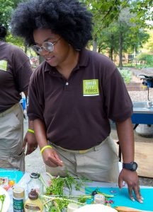 Green City Force Cooking Competition at Bay View Houses Farm